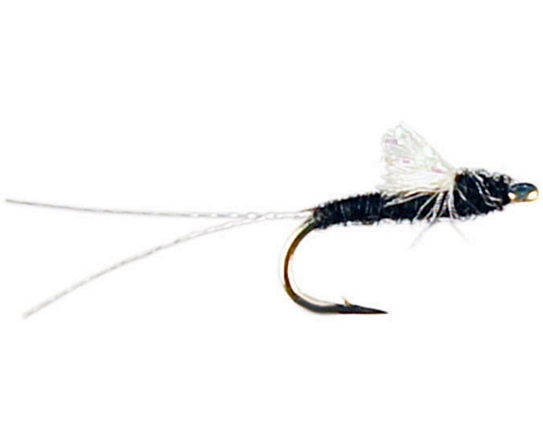 Juan's Sparkle Wing RS2 - Black