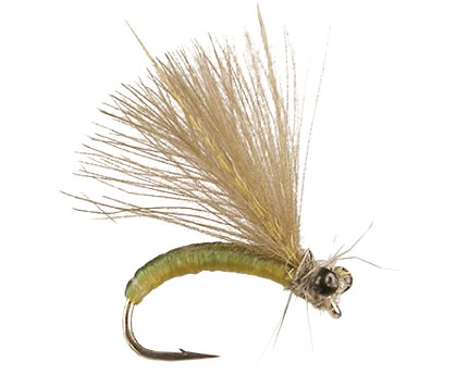 Joca's CDC Caddis Adult - Olive<br>#14-18