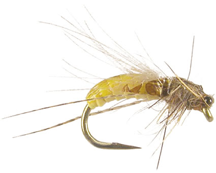 Joca's Caddis Pupa - Cream<br>#14-18