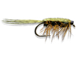 Rickards' Callibaetis Nmph - Olive - Peacock<br>#10-14
