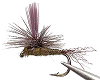 Blue Wing Olive Para-Emerger