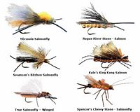 Stonefly - Salmonfly - Dry Fly Assortment