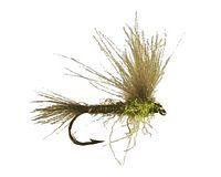 Loidl's CDC Split Wing Emerger -  PMD<br>#16-18