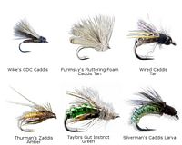 Caddis Fly Assortment - 12 piece